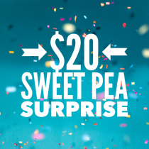 $20 Sweet Pea Surprise